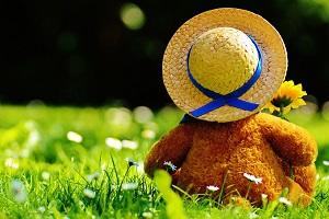 teddy-bear-797576_1280